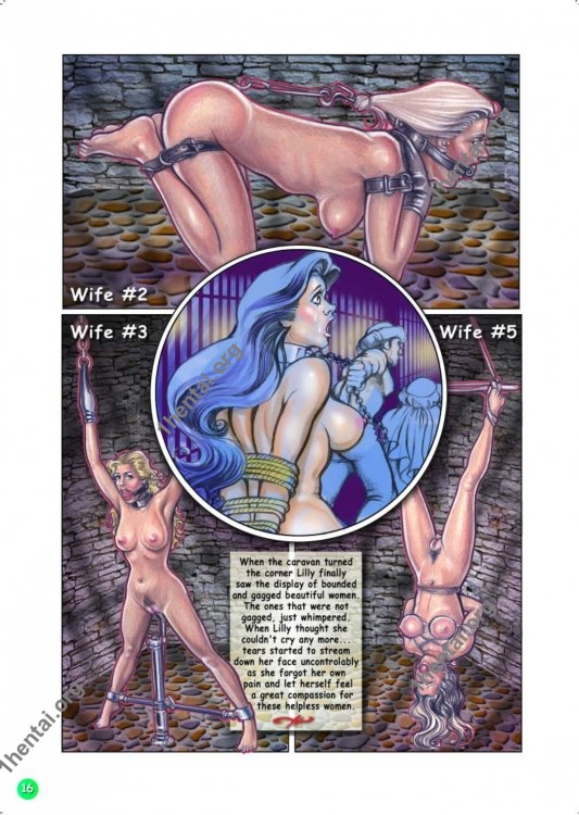 Fansadox - The Adventures Of Lilly Roscoe (EN - Comic - Erotic - Bdsm)